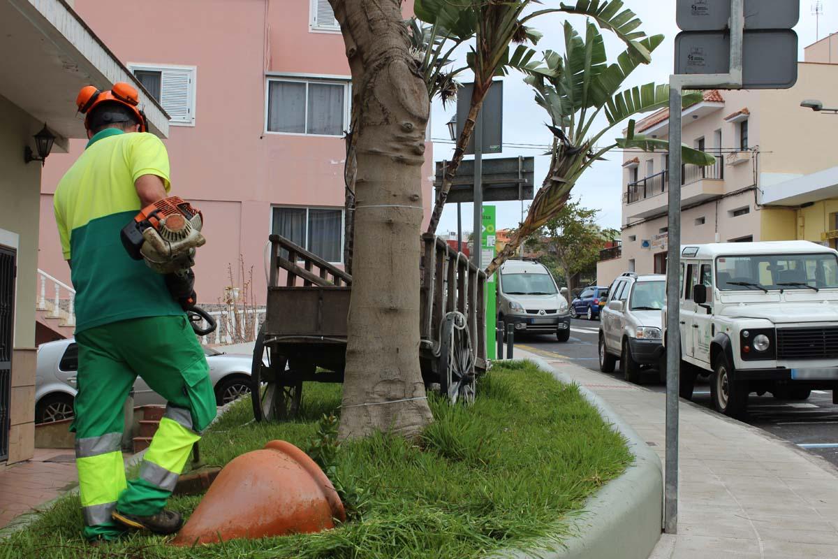 Limpieza intensiva de v as y jardines en san juan de la rambla for Limpieza de jardines madrid